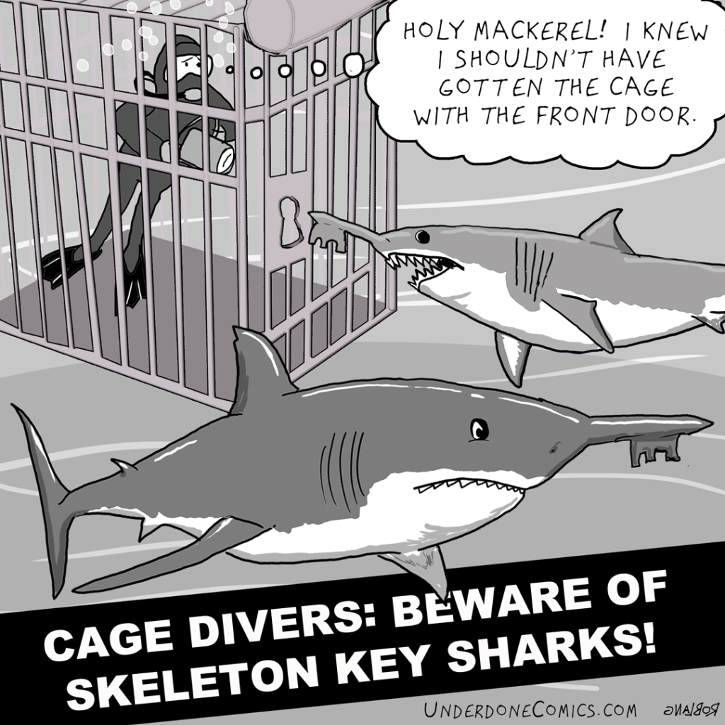 UNDERDONE-DAILY-skeleton-key-shark