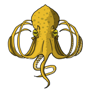 2016 World Octopus Day